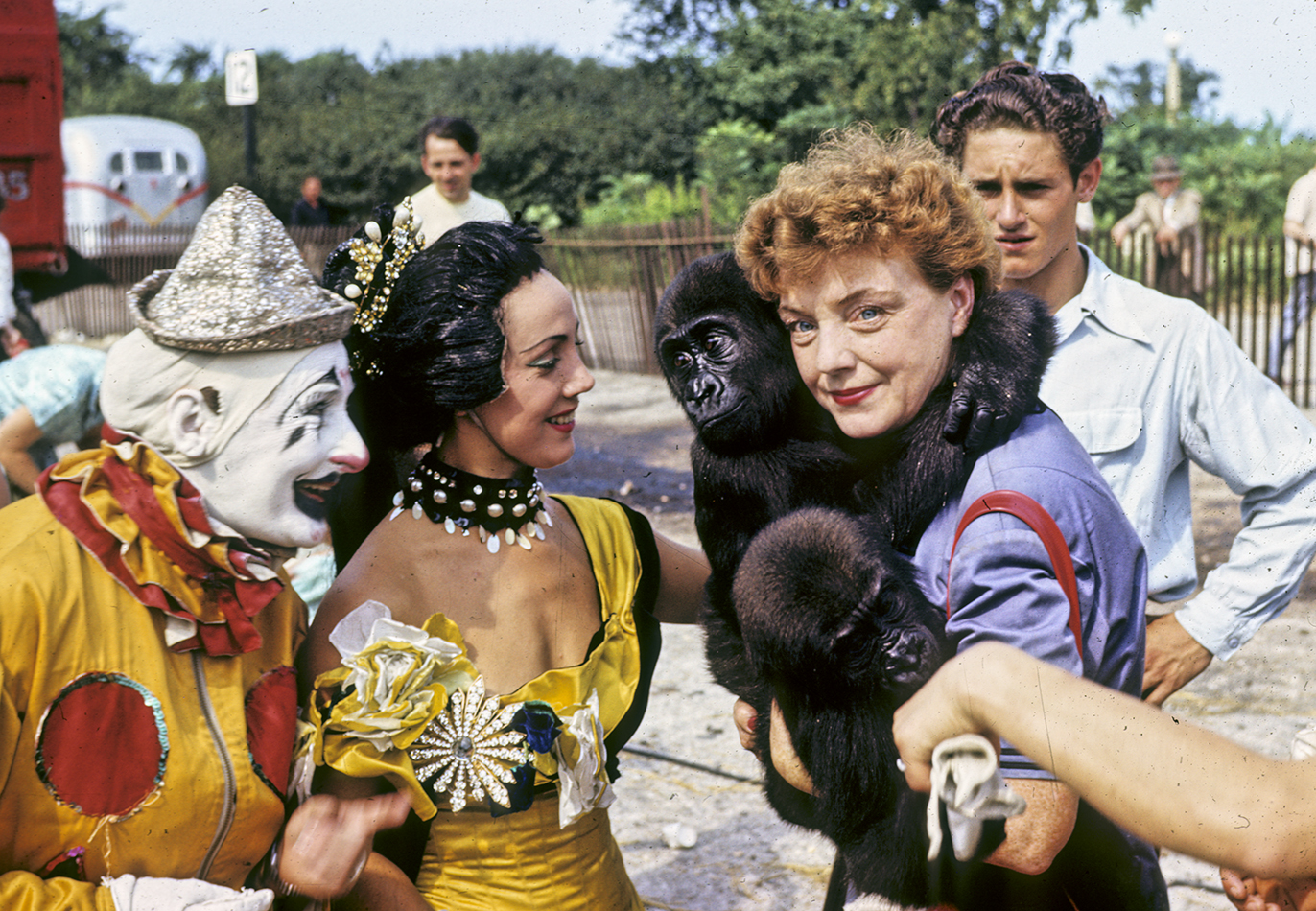 Four people in image, from left to right: a clown with white and black face paint in a yellow and red outfit, one aerialist in a yellow and black outfit, a woman in blue holding two baby gorillas, and a man in background looking at the gorillas.
