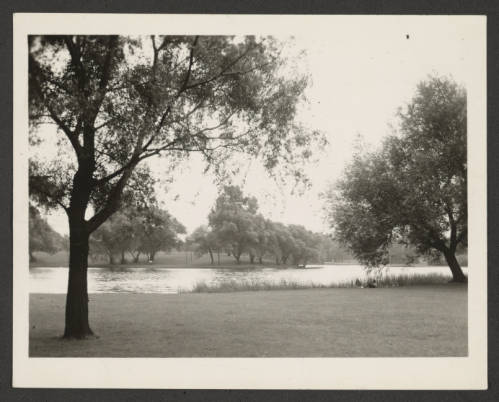 Sepia tone photo of lake amidst trees in a park