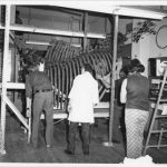 Black and white photo featuring four Illinois State Museum staff, their backs turned to the camera, facing the huge rib cage and vertebrae of a mastodon skeleton