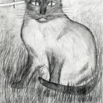 Child's pencil drawing of a cat in grass