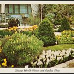 Postcard showing a landscape garden at the Chicago World Flower and Garden Show.